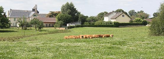 Construire en zone agricole corr ze - Chambre d agriculture correze ...